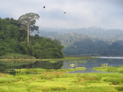 Nam Cat Tien National Park 2 Days/ 1 Night